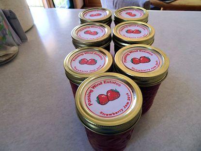 Strawberry Jam4
