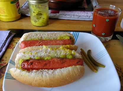 Turkey Hot Dog1