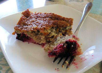 Rhubarb Haskap Cake at oldfatguy.ca