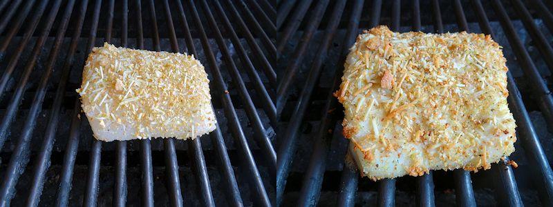 Parmesan Grilled Halibut 1