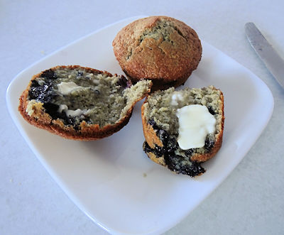 Sourdough Blueberry Cornmeal Muffins at oldfatguy.ca