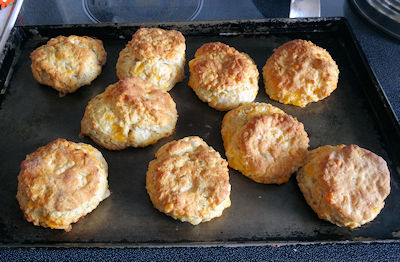 Sourdough Cheese Biscuit 4