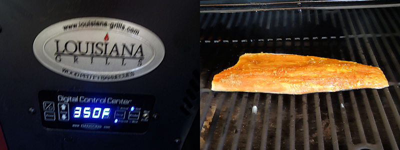 Sweetened Salmon 2