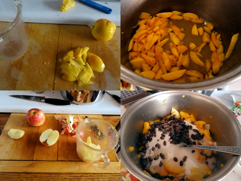 Bernardin Peach Pie Filling 03