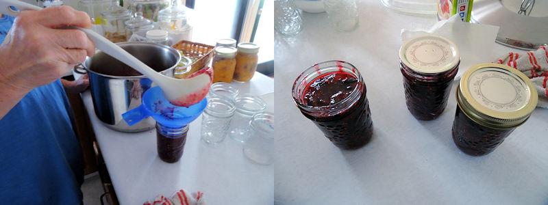 Mountian Berry Jam 04