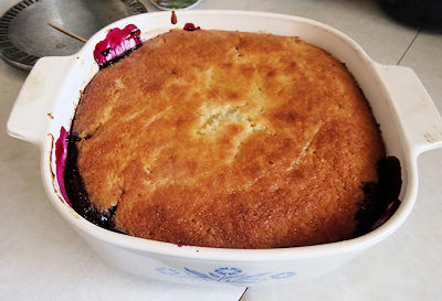 haskap-pudding-cake-07
